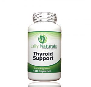 thyroid support supplements