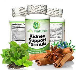 Kidney Support Formula